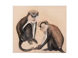 Two Cercopithecini (Cercopithecuswolfi)